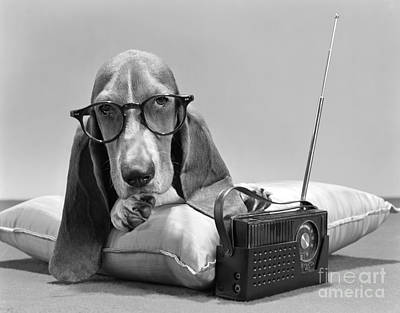 Dog With Glasses And Radio, C.1960s Poster by H. Armstrong Roberts/ClassicStock