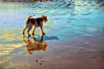Doggone Beachy Day Poster