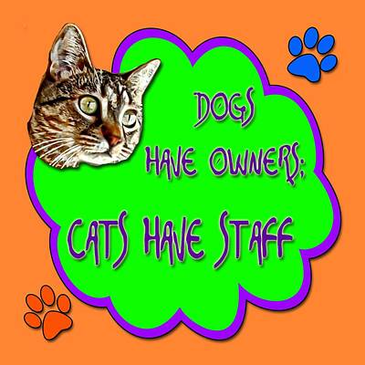 Dogs Have Owners Cats Have Staff Poster
