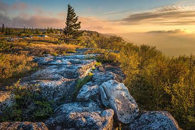 Monongahela National Forset Dolly Sods Wilderness Poster