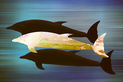 Dolphin Pod Poster by Sharon Lisa Clarke