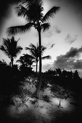 Dominicana Beach Poster