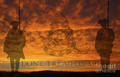 Don't Tread On Me Sunset Poster by Randy Steele