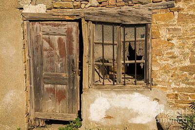 Door And Windows Poster