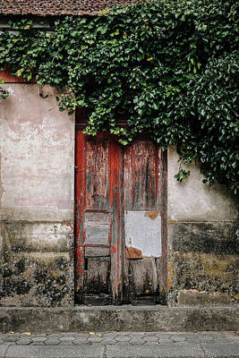 Poster featuring the photograph Door Covered With Ivy by Marco Oliveira