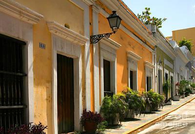 Doors Of Old San Juan Poster by Timothy Johnson