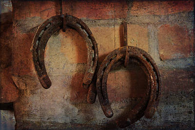 Double Horseshoes Poster by Toni Hopper