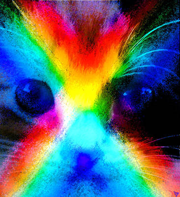Poster featuring the painting Double Rainbow Cat by David Lee Thompson