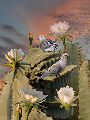 Doves And Peruvian Apple Cactus Poster