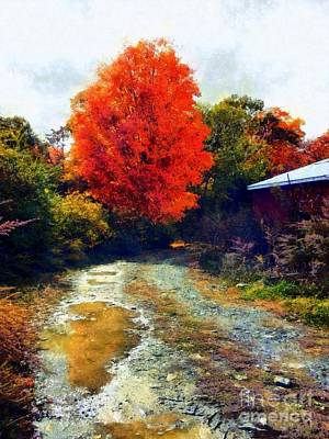 Poster featuring the photograph Down A Country Road - Autumn by Janine Riley
