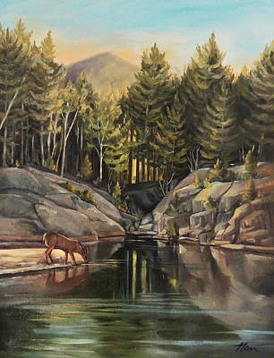 Down By The Pemigewasset River Poster by Nancy Griswold