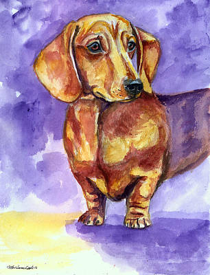 Doxie - Dachshund Dog Poster by Lyn Cook
