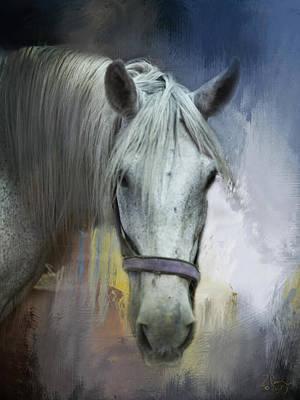 Draft Horse In Michigan Poster