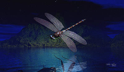 Dragonfly Night Reflections Poster