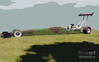 Poster featuring the photograph Dragster Flower Bed by Bill Thomson