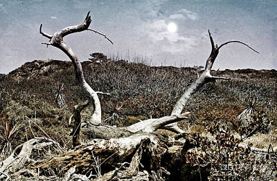 Dramatic Landscsape Poster