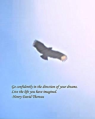 Dream Poster by John Feiser