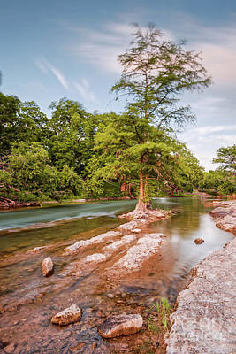 Dreamy Bald Cypress At Guadalupe River - Canyon Lake Texas Hill Country Poster by Silvio Ligutti