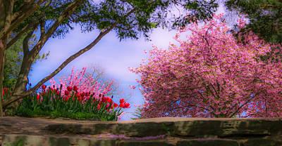 Dreamy Tulip Respite Poster