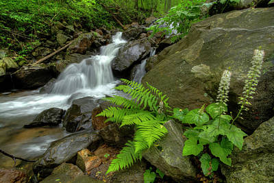 Poster featuring the photograph Dreamy Waterfall Cascades by Debra and Dave Vanderlaan