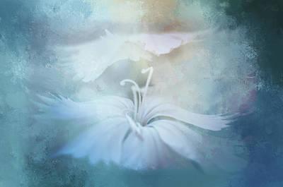 Dreamy Whisper Poster