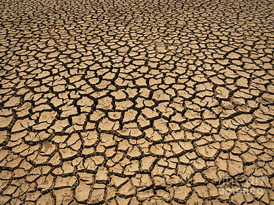 Poster featuring the photograph Dried And Cracked Soil In Arid Season. by Tosporn Preede