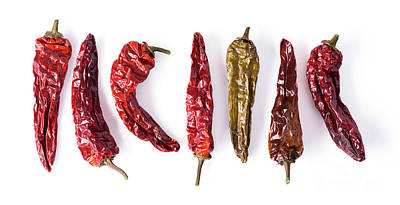 Dried Peppers Lined Up Poster
