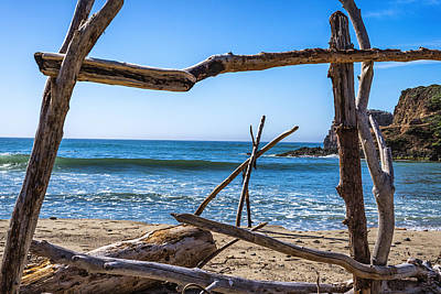 Driftwood Frame Poster by Joseph S Giacalone