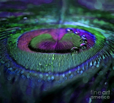 Drops Of Illusion Poster by Krissy Katsimbras