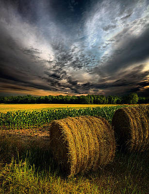 Drought Poster by Phil Koch