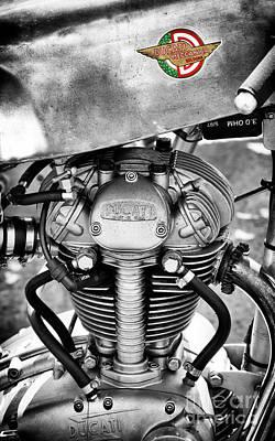 Ducati Single Monochrome  Poster by Tim Gainey