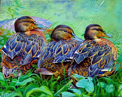 Duck Pond Poster by Kelly McNeil