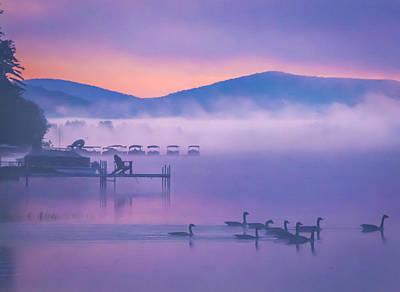 Ducks Under Fog Poster