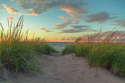 Dune Path At Sunset Poster