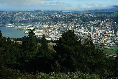 Dunedin From Signal Hill Poster by Terry Perham