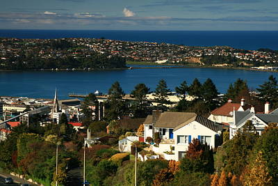 Dunedin Nz View To Andy Bay Poster by Terry Perham