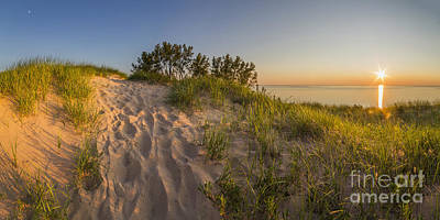 Dunegrass At Sunset Poster by Twenty Two North Photography