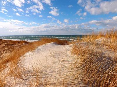 Dunes In Winter Poster