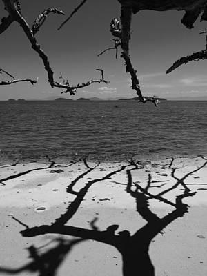 Dunk Island Australia 172 Poster by Per Lidvall