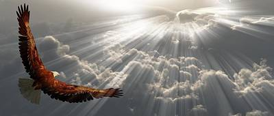 Eagle In Flight Above The Clouds Poster by Bruce Rolff