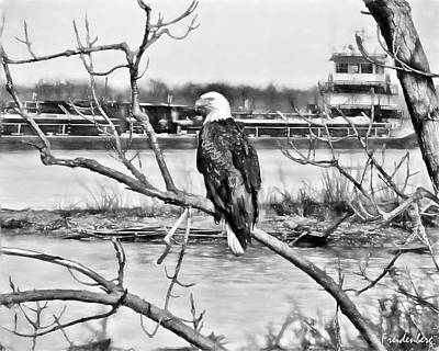 Eagle On The Illinois River Poster by John Freidenberg