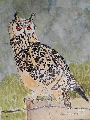 Eagle Owl Poster