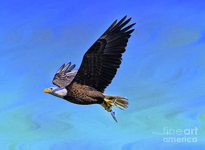 Poster featuring the photograph Eagle Series Success by Deborah Benoit