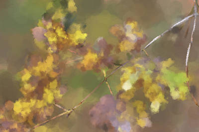 Early Fall Leaves Poster