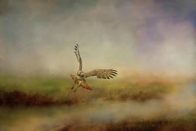 Early Morning Hunt Wildlife Art Poster by Jai Johnson
