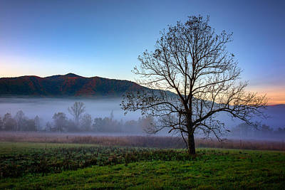 Early Morning Mist In Cades Cove Poster
