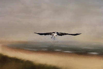 Poster featuring the photograph Early Morning Takeoff by Kim Hojnacki