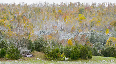 Poster featuring the photograph Early Snow Fall by Wanda Krack