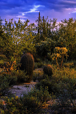Poster featuring the photograph East Of Sunset V40 by Mark Myhaver