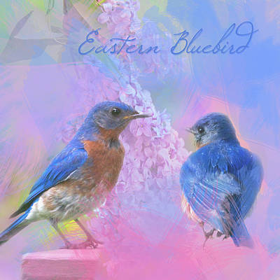 Poster featuring the photograph Eastern Bluebirds Watercolor Photo by Heidi Hermes